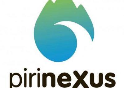 Pirinexus taxi